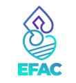 Logo_EFAC_2021-removebg-preview